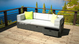 New Outdoor Garden Sofa/ PE Rattan Furniture/ Sofa Bed (DH-9590)