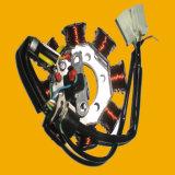 Cgx-125 Motorbike Stator, Motorcycle Stator for Argentina