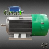 250rpm Permanent Magnet Generator for Wind and Hydro Turbine
