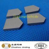 Tungsten Carbide Coal Mining Tip for Mining