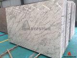 Natural Granite Andromeda White Slab for Interior Countertop