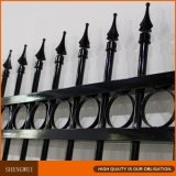 Low Carbon Iron Decorative Beautiful Fence for Garden