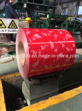 Colorful Steel PPGI Coil From Shandong