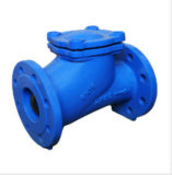 Check valve of TFW VALVE