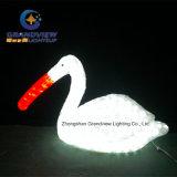 LED Acrylic Cormorant Interest Motif Light