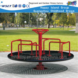 Stainless Steel Outdoor Exercise Fitness Equipment Hf-21306