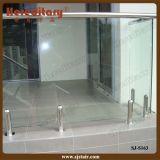 SUS 304# Glass Spigot in Frameless Glass Pool Fencing (SJ-S163)