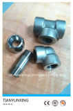 ASME B16.11 Female Froged Stainless Steel Fittings