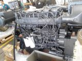Sinotruk Steyr D12 Marine Diesel Engine for Fishing Boat