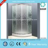 Aluminium Frame Acid Glass Simple Shower Room Shower Cubicle (BLS-9508)