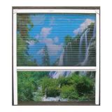 Retractable Mosquito Screen/Fly Screen/Mosquito Net