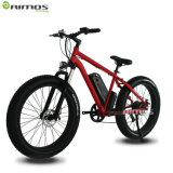 Bottom Price Stealth Bomber Electric Bike Fat Tire Snow Ebike