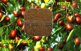 Animal Feed Jujube Powder for Chicken Feed -Hot Sale