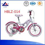 Shanghai Fair Hot Sale Model Children New Bicycle Baby Dirt Bike