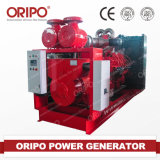 Ce ISO Authorized 500kw Cummins Generator Fuel Biomass