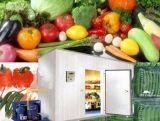 Customising Deep Freezing Cold Storage Room