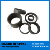 N45 Ring NdFeB Ni Coating Magnet with Hole