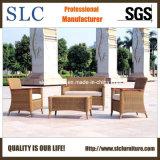 Modern American Style Rattan Sofa Set /Garden Sofa Sc-B1002)