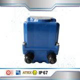 Made in Korea Electric Actuator