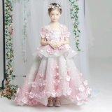 a Lovely Little Princess Dress