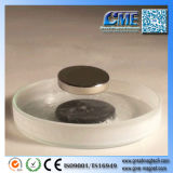 Wholesale Magnetic Levitation Products Module Levitation Magnetic