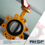Epoxy Coating Ductile Iron Wafer Type Lug Concentric Butterfly Valve