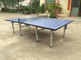 Double-Folding Table Tennis Table (TE-08)