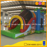 Amusement Park Multi-Function Toy Kid Inflatable Combo Bouncer Slide (AQ169-1)