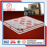 Healthy Latex Foam in The Pillow Pocket Spring Mattress with Elegant Cover