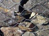 Hexagonal Gabion Mesh for River Wall