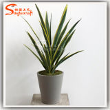 High Imitation Artificial Potted Bonsai Yucca Plant with Ifr