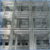 Hight Quality Protecting Mesh Galvanized Welded Wire Mesh Panel