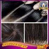 2015 New Design Virgin Brazilian Remy Silk Top Human Hair Wig (ZY-02)