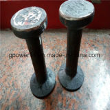 Hardware Forging Head Lifting Anchor
