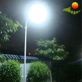 80W New Street Light/Driving Road Solar Street Lighting