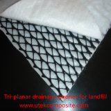 Tri-Planar Drainage Geonet Composite Geotextile for Landfill