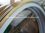 PTFE/Teflon Spiral Wond Gaskets (SUNWELL)