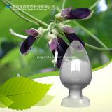 Velvet Bean Plant Extract 50% 98% Levodopa