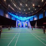 PVC Indoor Sports Flooring for Badminton Court