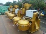 Guangxin Top Sales Automatic Cold Oil Press for Seeds Yzlxq140