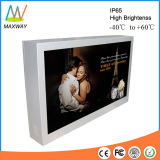 32 Inch Outdoor LCD Advertisement Monitor with Samsung/LG Screen (MW-321OB)