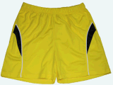 Men's 100% Polyester Quick Dry Short