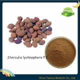 Sterculia Lychnophora P. E. /Scaphium Scaphigerum Extract/Semen Sterculiae Lychnophorae P. E