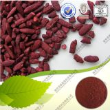 Natural Food Pigment Fermented Red Yeast Rice Powder