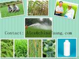 Broad-Leaved Weeds Control Plant Protection Herbicide Metribuzin