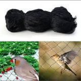 HDPE Black Anti Bird Netting for Highway or Airports Areas