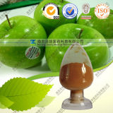 Natural Apple Juice Peel Extract Powder with Polyphenols Phloretiin