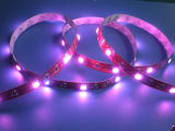 SMD 3528 Waterproof Flexible LED Strip Light/LED Flexible Strip (3528-120W)