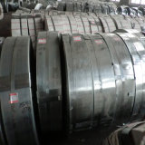 Pre Galvanized Steel Strip Use for Making Pipe