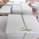 White Sandstone Floor Tile Swimming Pool Tile